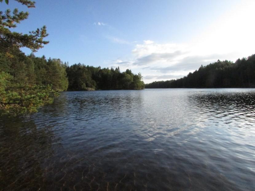Vättlefjäll Natural reserve