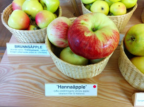 A rather interesting name for an apple